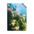 Takashi MUKAIのNote-Rose02 Notes