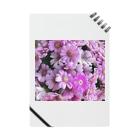 Parfume-weaverの季節のお花シリーズ サイネリア Notes