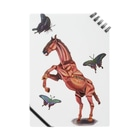波田野剛望(はたのたけみ)の馬と蝶 Notes