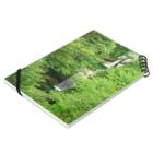 Toshiaki Sakuraiの深緑の滝 Notesの平置き