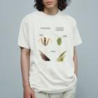 L_arctoaのオオカマキリとチョウセンカマキリ Organic Cotton T-shirts