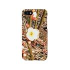 藍美代子の梅の花🌼 Smartphone cases