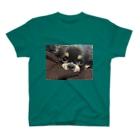 at_mikaのチワワのデヴィちゃん T-shirts