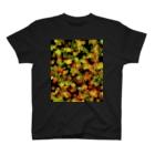 とりぷしんハウスのRed&Green_Square T-shirts