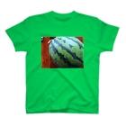 hrkのスイカ T-shirts