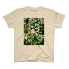 asagi's shopの一輪の薔薇 T-shirts