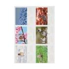 aliveONLINE SUZURI店の東京すずめカレンダー2020(B-Type) Stickable tarpaulin