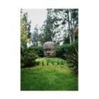 FUCHSGOLDのメキシコ:オルメカの巨石人頭像 Mexico: Olmec colossal head Stickable poster