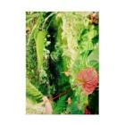 Kelfoy.の植物園 Stickable tarpaulin