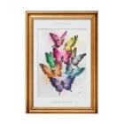 AKI ONLINE SHOP 色のある暮らしの誕生日の色の蝶々 Stickable poster