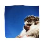 ハリネズミつんさんのグッズのハリネズミ平井つんさん Towel handkerchiefs