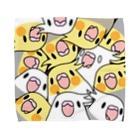 まめるりはことりのみっちりむっちり過密オカメインコさん【まめるりはことり】 Towel handkerchiefs