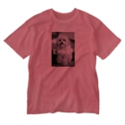 mota2の犬E=mc2 Washed T-shirts