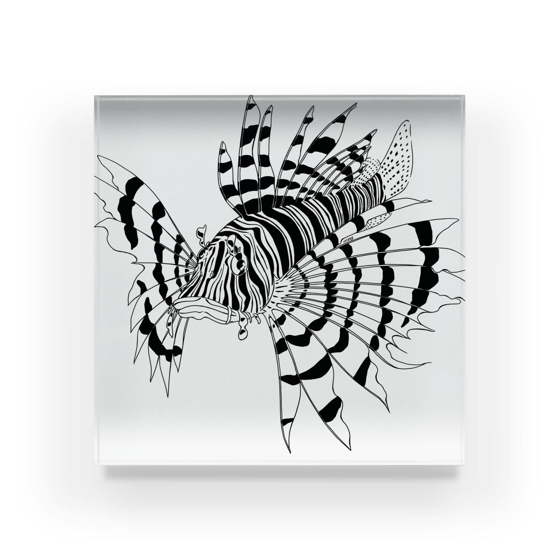 uki4837li.com SUZURI支店のミノカサゴ〈モノクロ水族館〉 Acrylic Block