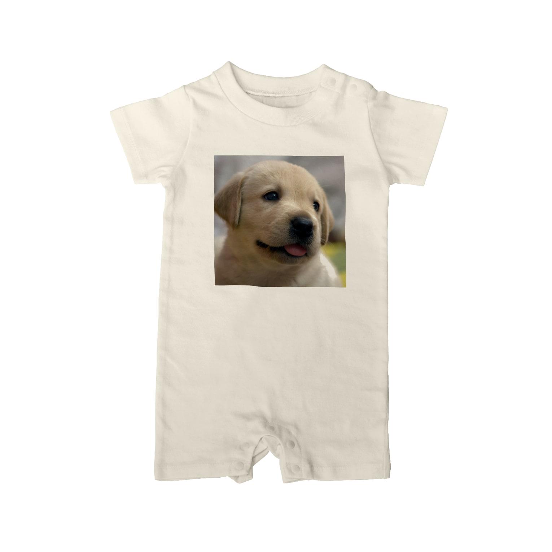 dohshinのラブラドール・レトリバーの子犬 Baby rompers