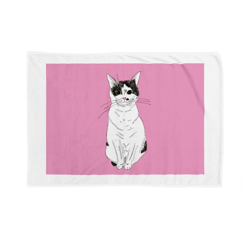 みーこおすわりイラスト 猫 白黒猫 保護猫 イラスト はにゃ