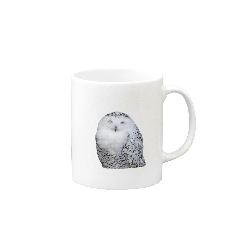 s_k_rの梟 Mugs