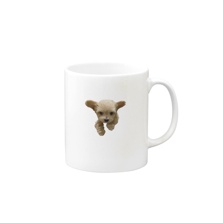 hiramechanのトイプーひらめ Mugs