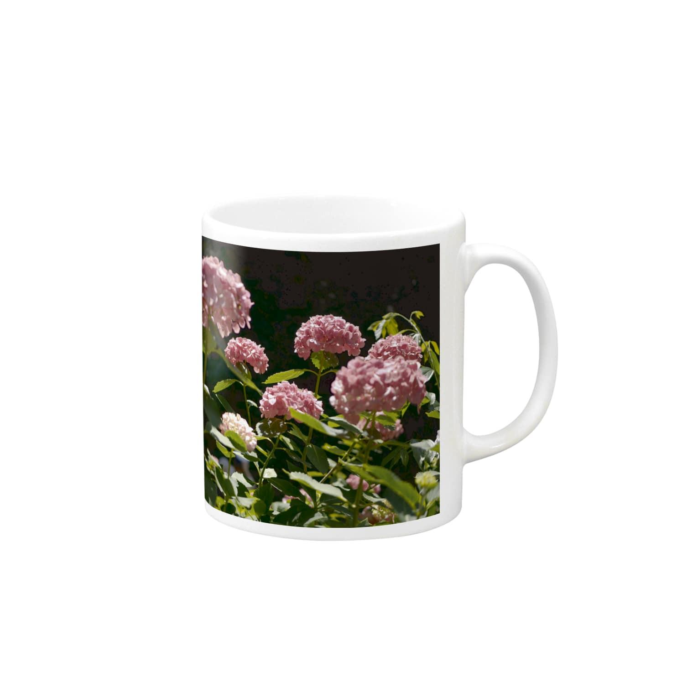影のある写真とチワワの赤い紫陽花 Mugs