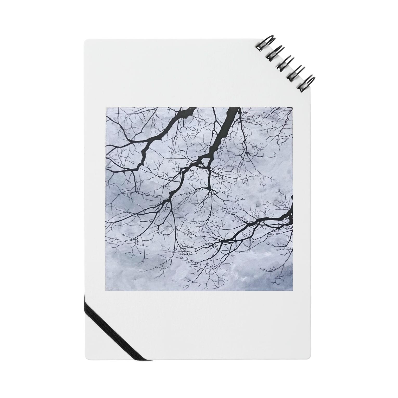 采-aya-の道中、冬 Notes
