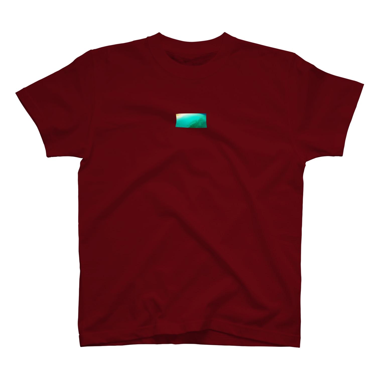 RYOKIのマルーン T-shirts