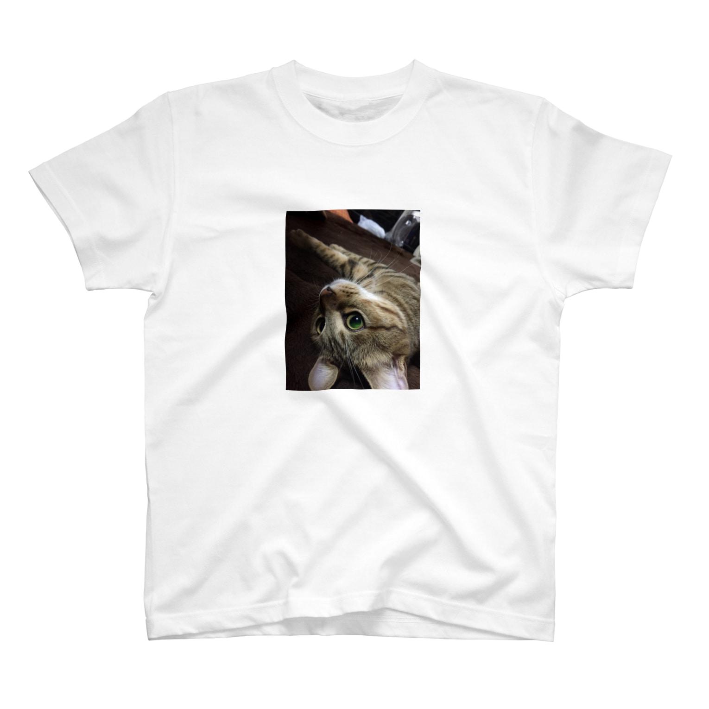 とこのGreeneye T-shirts