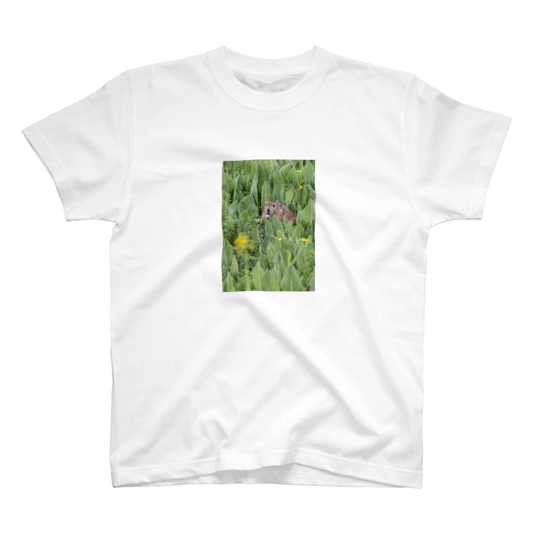 ゆきうさぎ工房のナキウサギinメタカラコウ T-shirts