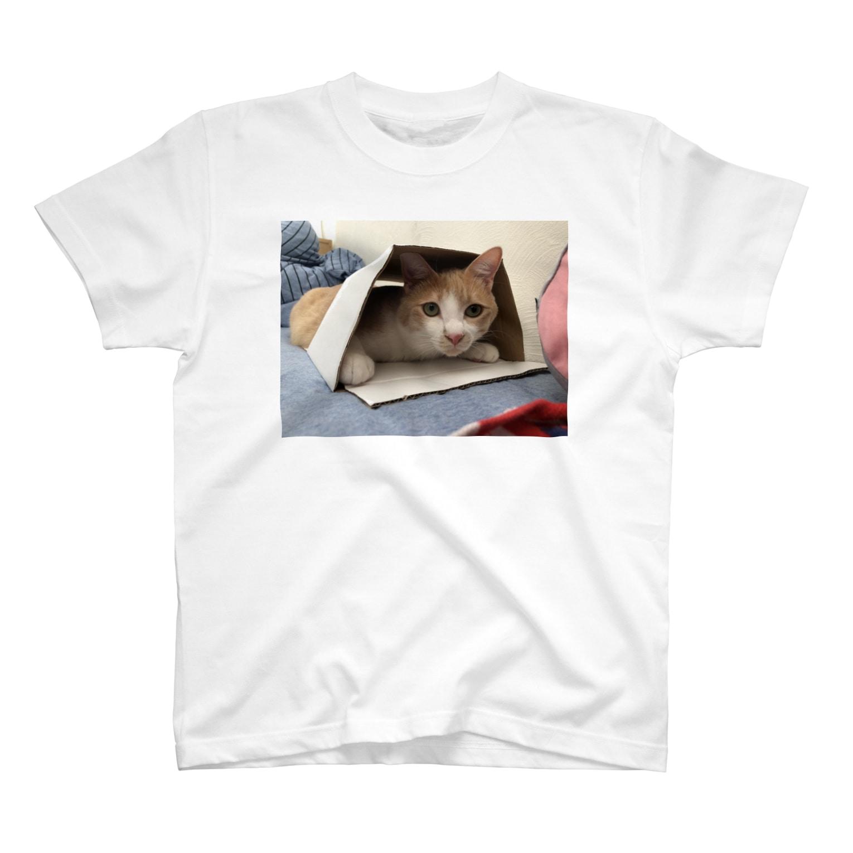 minminmikotanのしんたまころがしT T-shirts