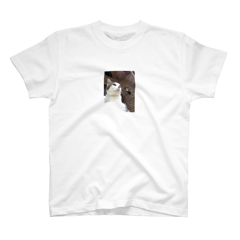 daidouのいつもふてぶてしいうちの愛猫 T-shirts