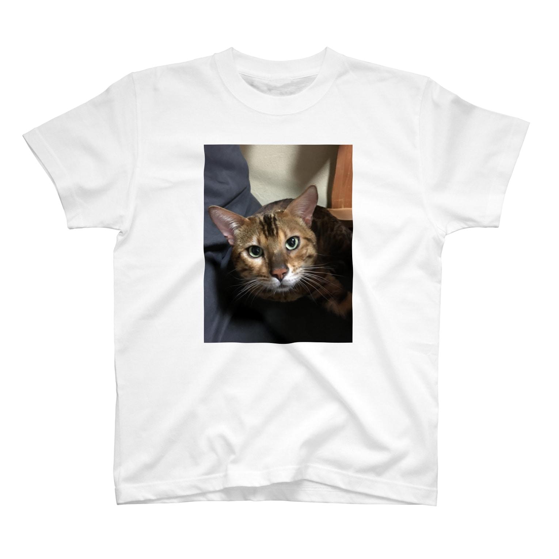 ashigarakintaのPitha T-shirts