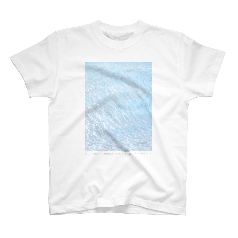 LWsのGl.Grey <Patagonia> T-shirts