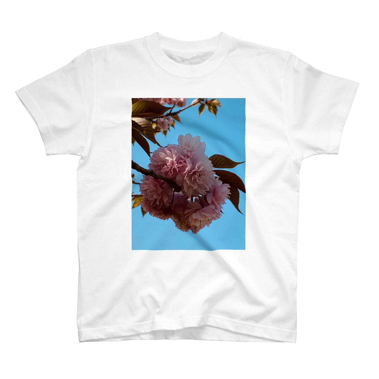 昭和~平成~令和系のりさぴん@のサクラサク T-shirts