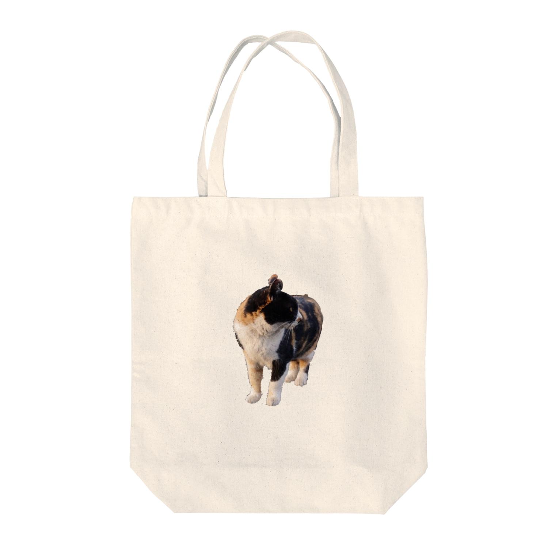 ezilaeruの猫 Tote bags