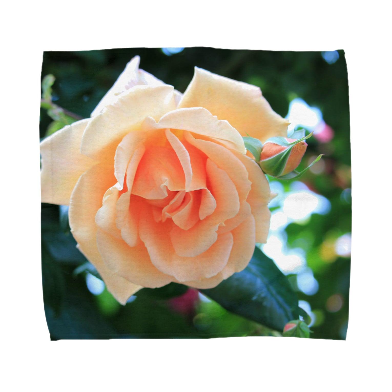 39soraの優しい薔薇 Towel handkerchiefs
