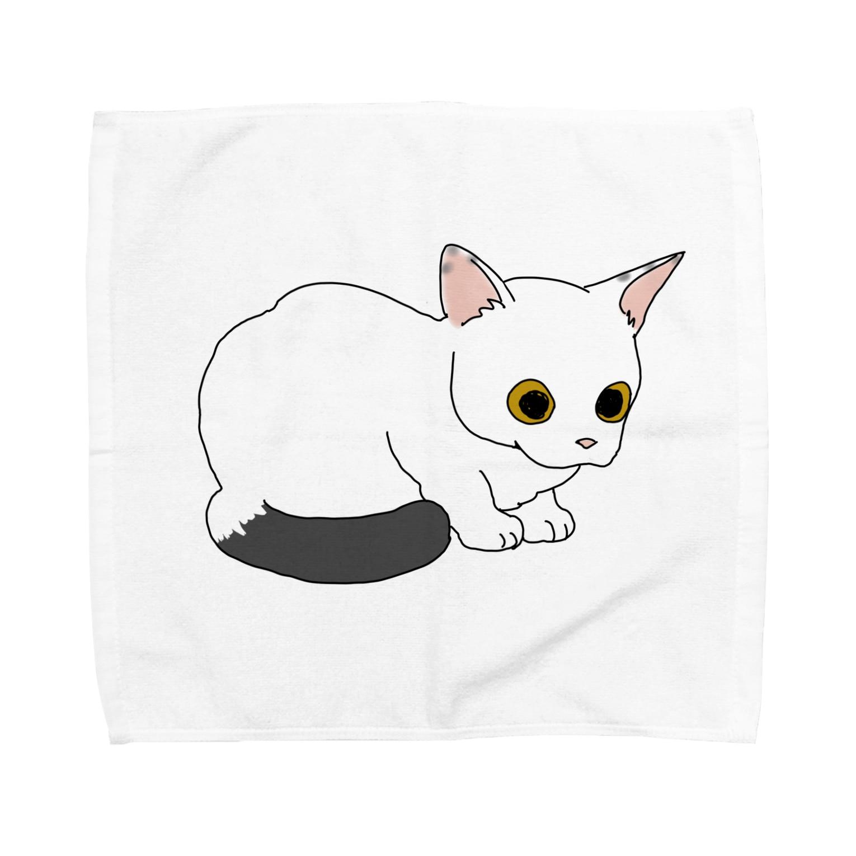atelier rainyの見つめるしっぽちゃん Towel handkerchiefs