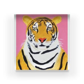 トラ Acrylic Block