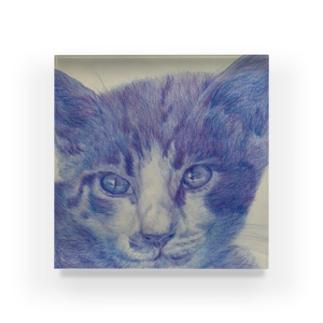 渋色猫 Acrylic Block