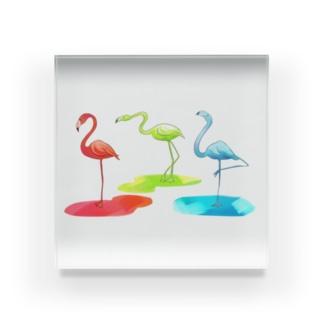 color-mingo Acrylic Block