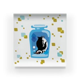 ペンギンの瓶詰めM Acrylic Block