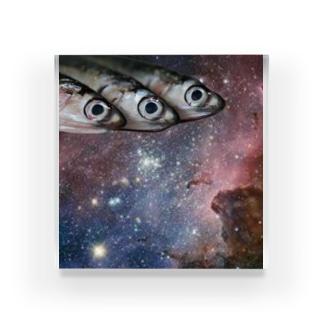 石川鯖右衛門の宇宙サバ Acrylic Block