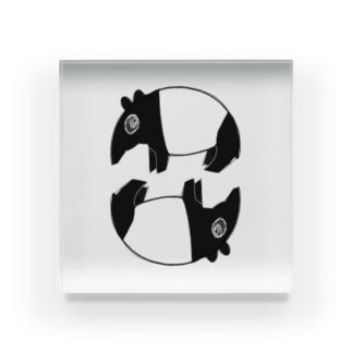 マレーバク Acrylic Block