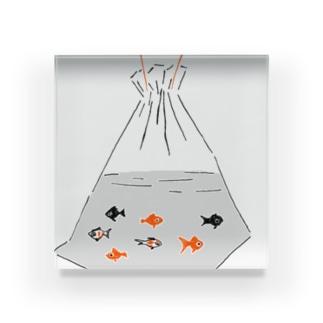 祭りデザイン「金魚すくい」 Acrylic Block