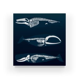 whalebone アクリルブロック