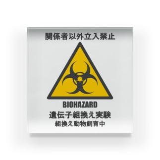 遺伝子組換え実験実施中(バイオハザード) Acrylic Block