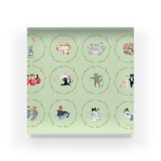 【HappyUnbirthday!】1stmember Acrylic Block