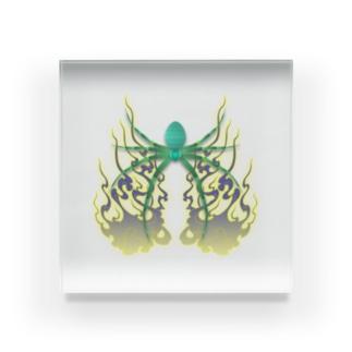 蜘蛛と火焔 Acrylic Block