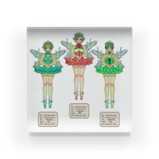 妖精標本 Acrylic Block