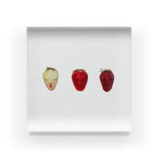苺の一生 Acrylic Block