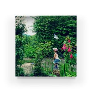 めいっこちゃんの夏 Acrylic Block