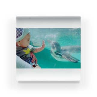 赤子氏とペンギン Acrylic Block